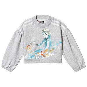 adidas Performance Frozen Sweatshirt Grey 9-10 years (140 cm)