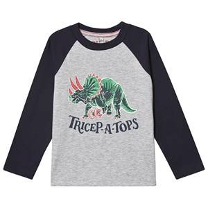 Tom Joule Finlay Dino T-Shirt Grey 3 years