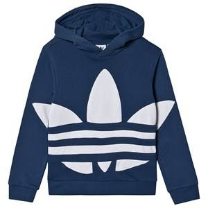 Image of adidas Originals Big Trefoil Logo Hoodie Navy 7-8 years (128 cm)