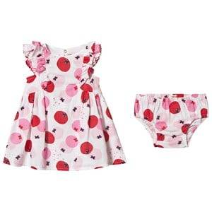Image of Catimini Tomato Print Ruffle Sleeve Dress with Bloomers White/Pink 6 months