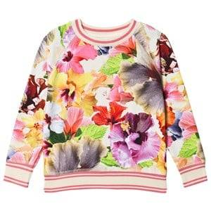 Image of Molo Raewyn T-Shirt Pacific Floral 116 cm (5-6 Years)