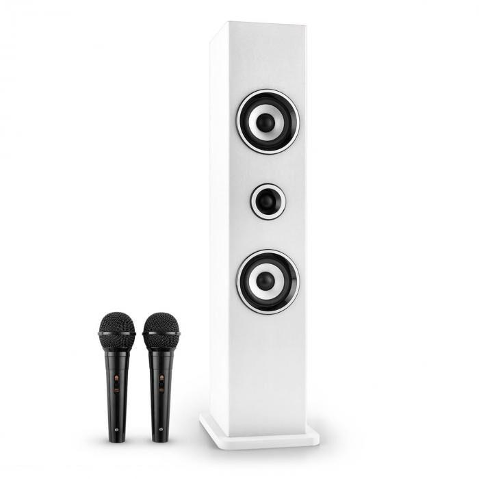 Auna Karaboom Bluetooth-kaiutin USB AUX FM karaoke 2 x mikrofoni valkoinen