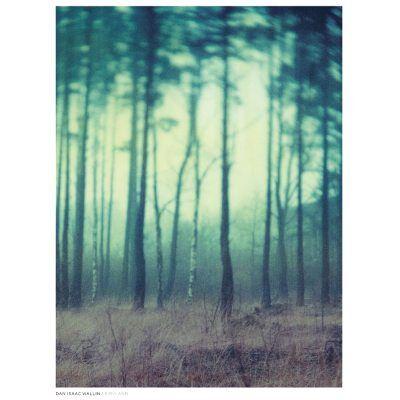 Dan Isaac Wallin Fairyland juliste