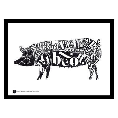TGIOC Pig juliste