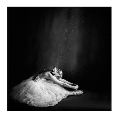 Selected by Walnutstreet Ballerina IV juliste