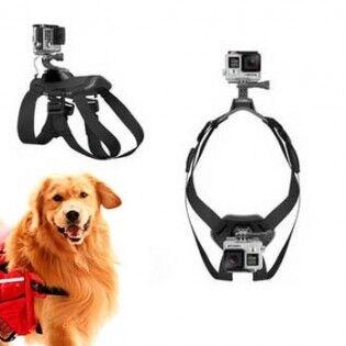 e-ville.com GoPro koiranvaljaat kahdella kamerapaikalla