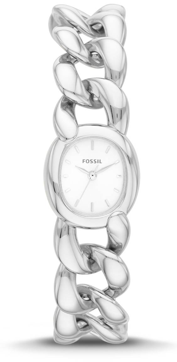 Fossil Curator ES3458