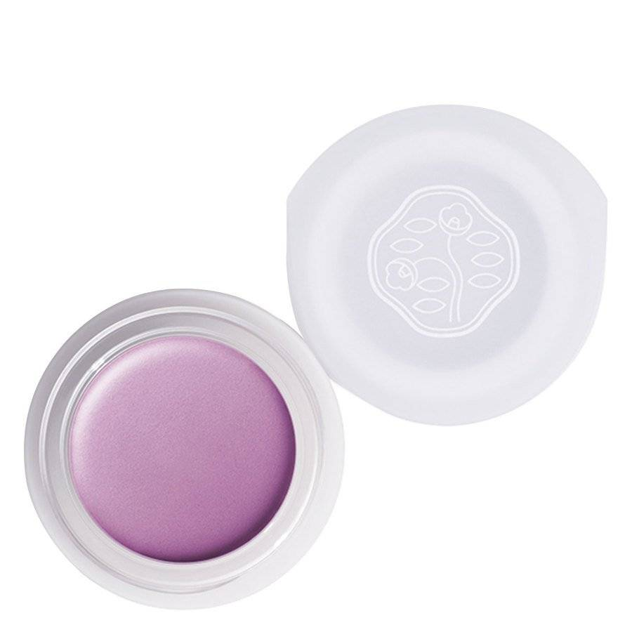 Shiseido Paperlight Cream Eye Color 6 g – VI304 Shobu Purple