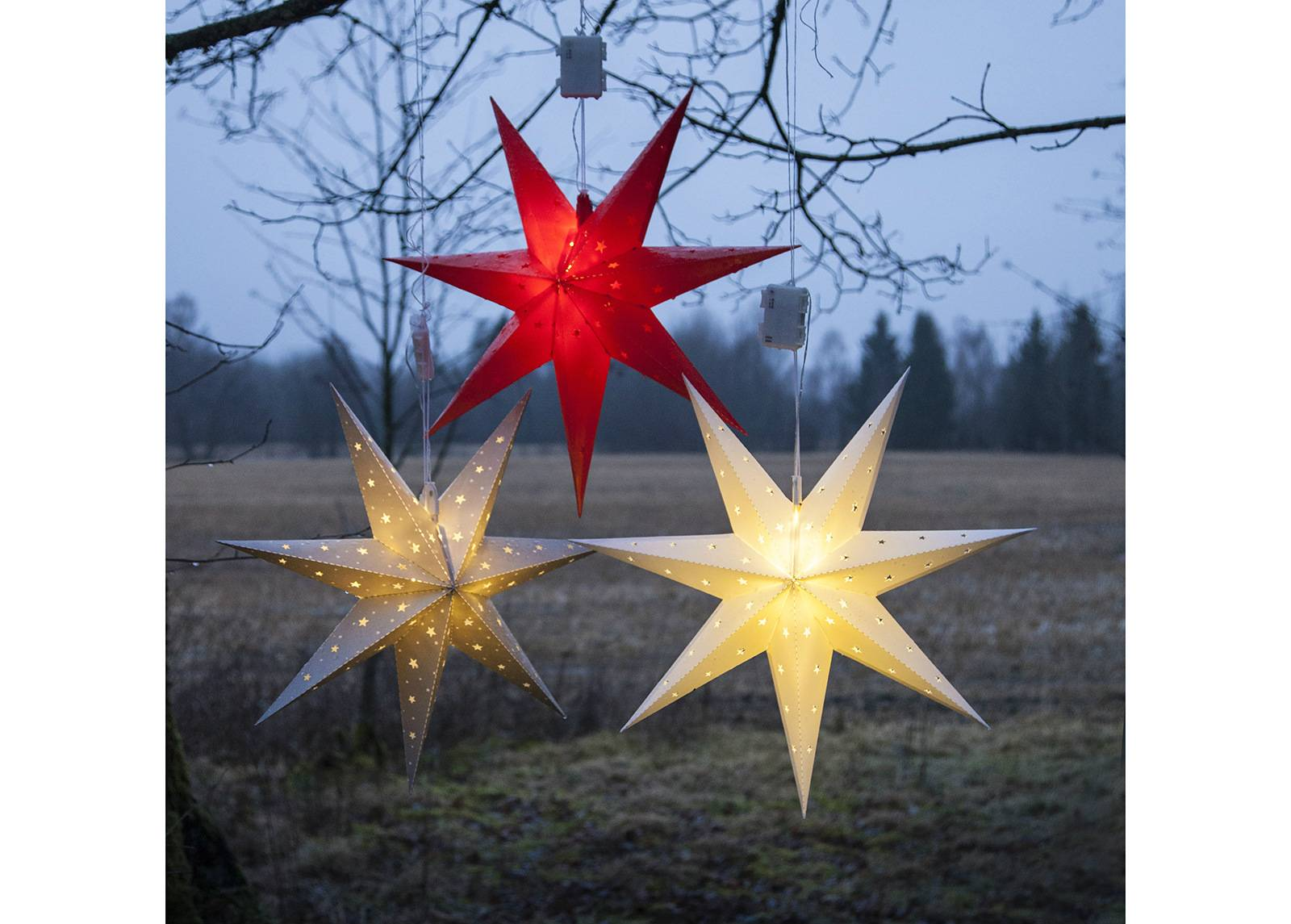 Star Trading Tähti ALICE