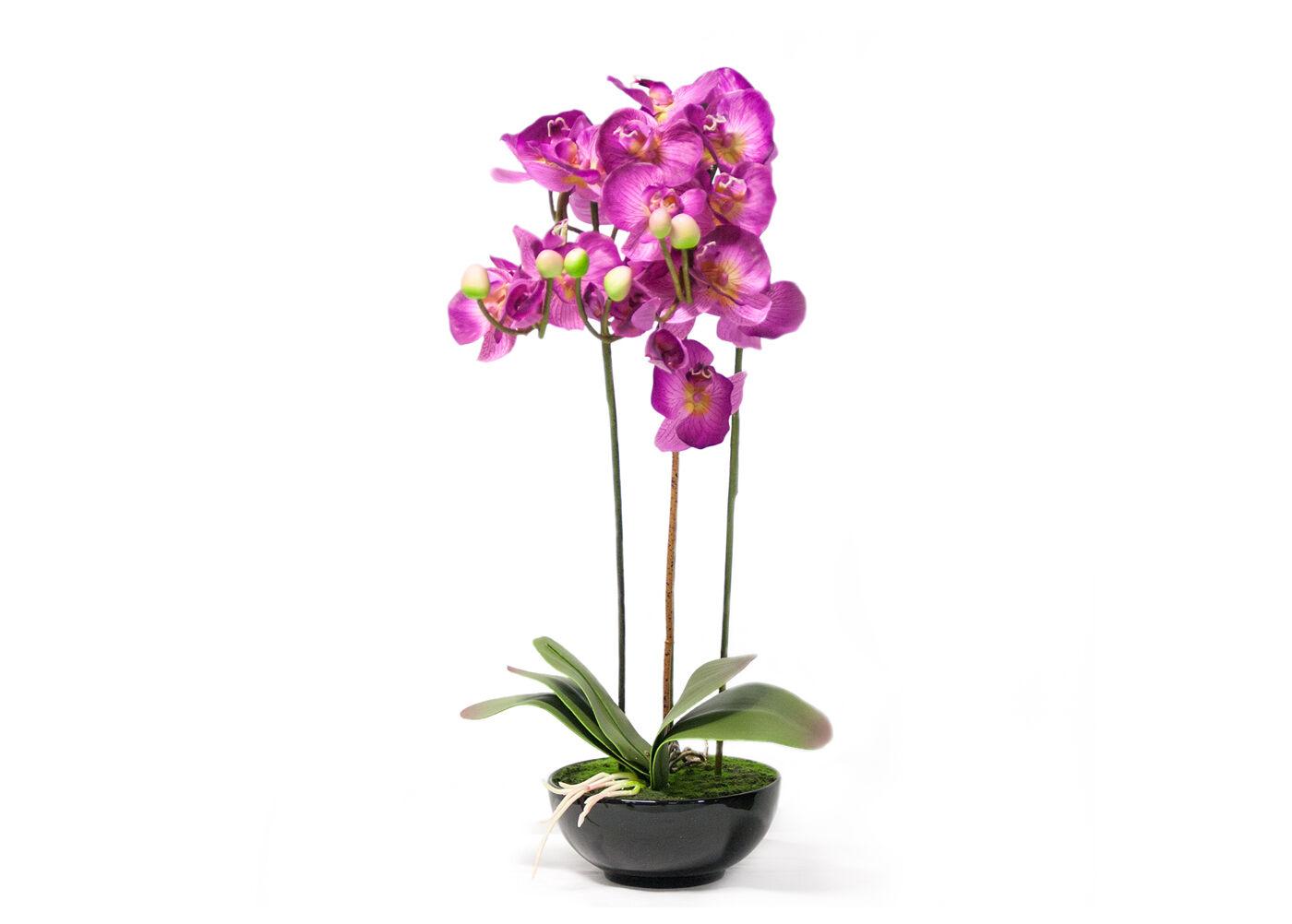 Home4you Koristekasvi vaaleanpunainen vaaleanpunainen Orkidea 72 cm
