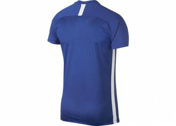 Image of Nike Miesten treenipaita Nike M Dry Academy SS M AJ9996-480