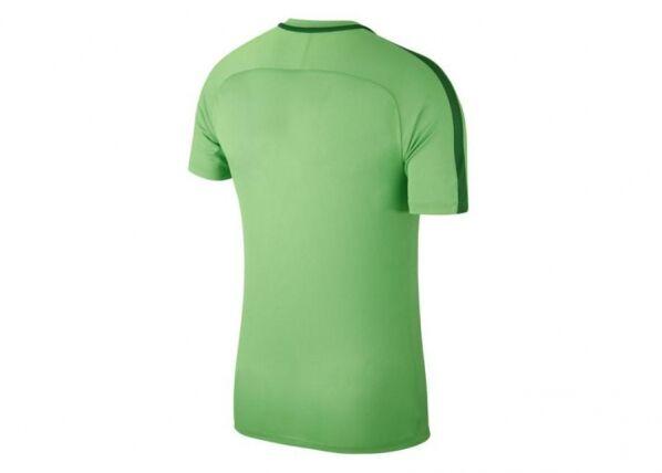 Image of Nike Miesten jalkapallopaita Nike NK Dry Academy 18 Top SS M 893693-361