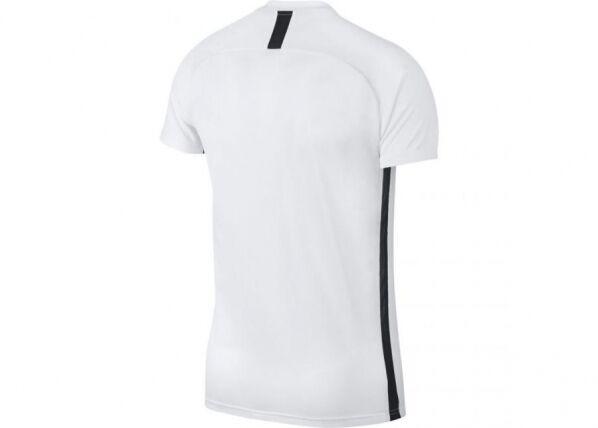 Image of Nike Miesten treenipaita Nike M Dry Academy SS M AJ9996-100