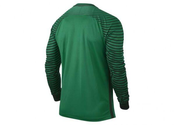 Image of Nike Miesten maalivahdin paita Nike Gardien GK M 725882-319