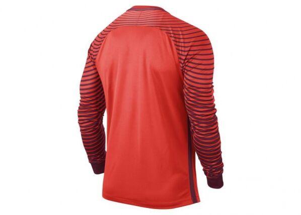Image of Nike Miesten maalivahdin paita Nike Gardien GK M 725882-671