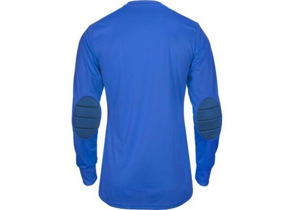 Image of Adidas Miesten maalivahdin paita Adidas Assita 17 M AZ5399