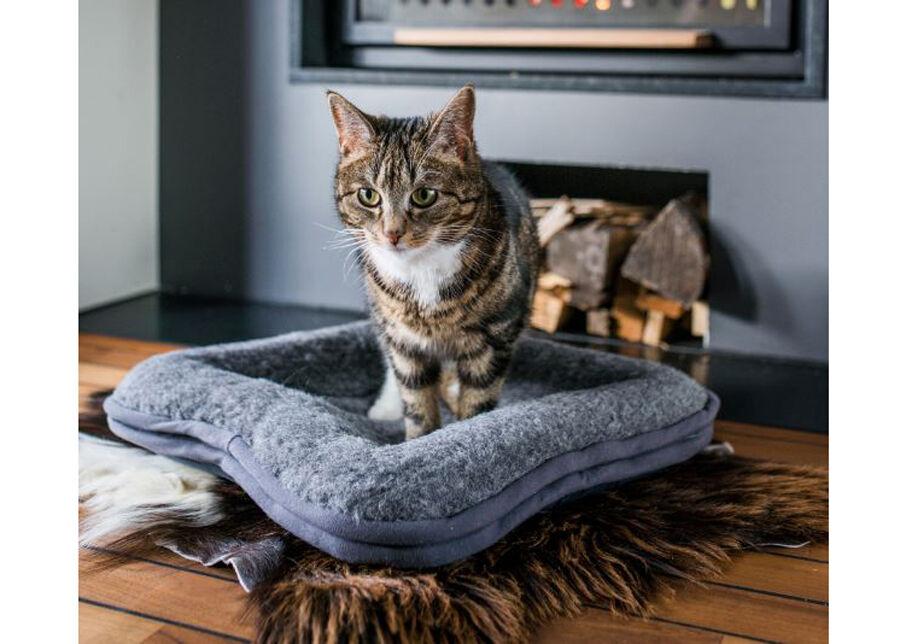 Willmar Lemmikkieläimen tyyny, kanttauksella 45x45 cm