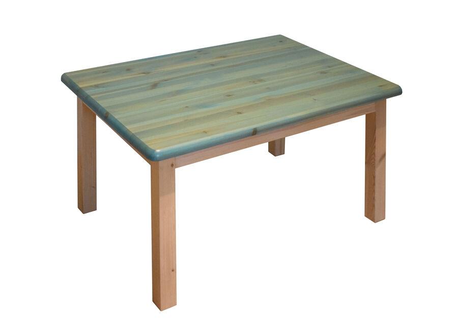 Lasten pöytä 100x70 cm