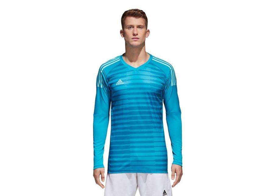 Image of Adidas Miesten maalivahdin paita adidas Adipro 18 GK M CV6350