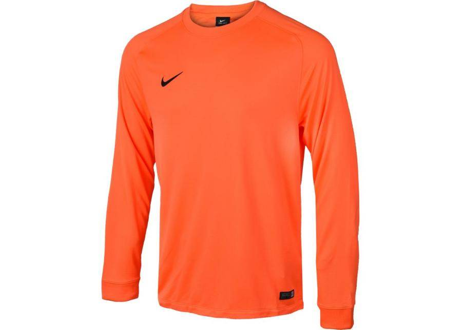 Image of Nike Miesten maalivahdin paita Nike PARK GOALIE II LS M 588418-803