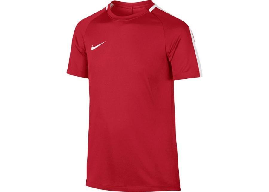 Image of Nike Lasten jalkapallopaita Nike Dry Academy 17 Junior 832969-657