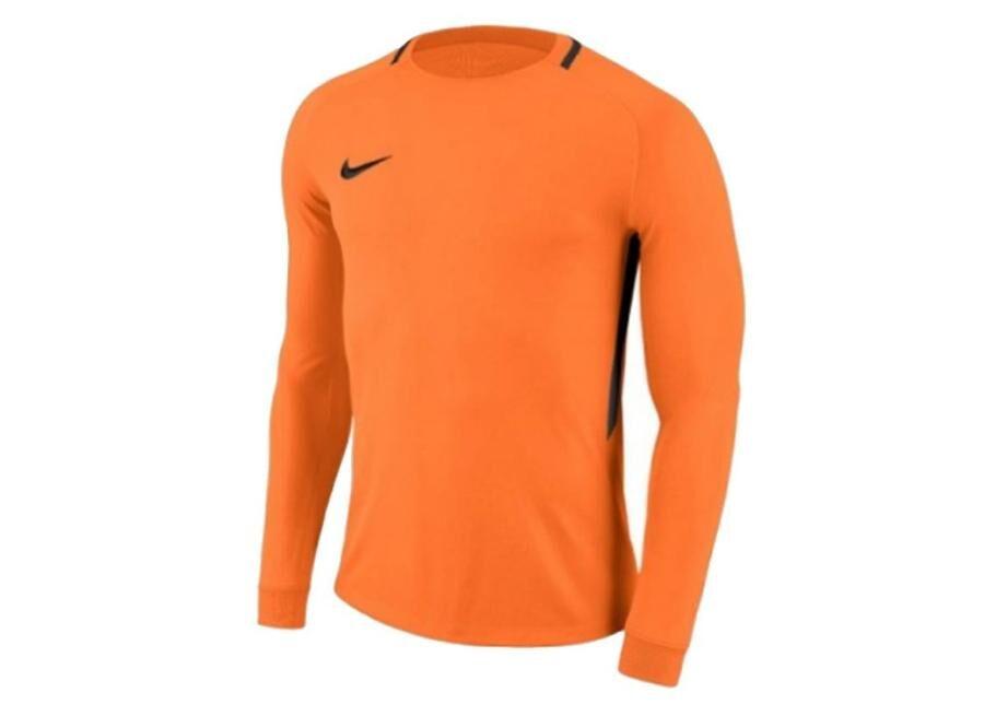 Image of Nike Miesten maalivahdin paita Nike Dry Park III LS M 894509-803