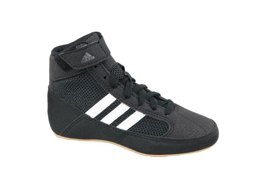 Adidas Lasten vapaa-ajan kengät Adidas Havoc K Jr AQ3327