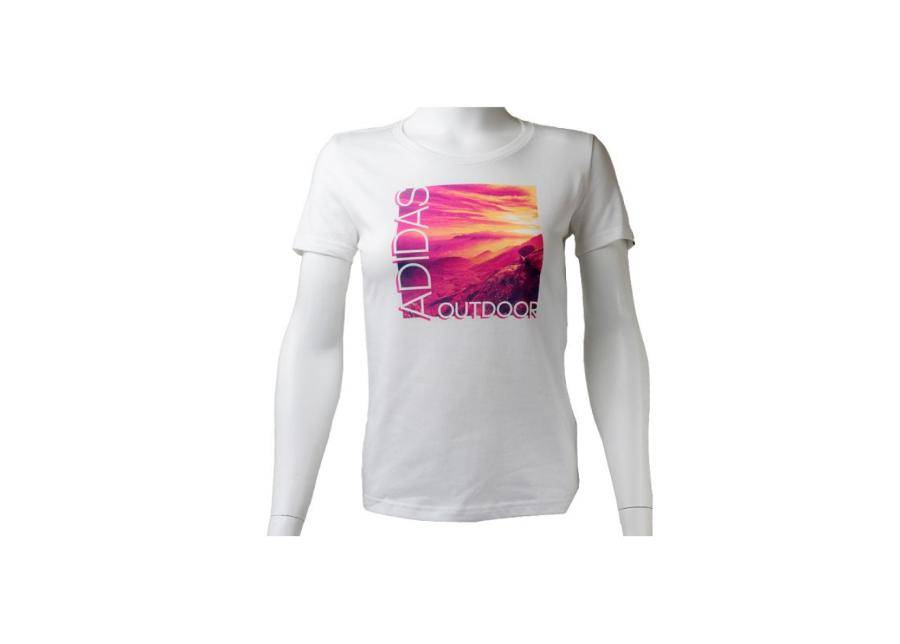 Image of Miesten t-paita Adidas ADI Landscape Tee M AI5930