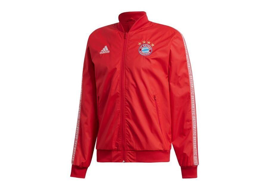 Adidas Miesten verryttelytakki Adidas Bayern Monachium Anthem Jacket M DX9218