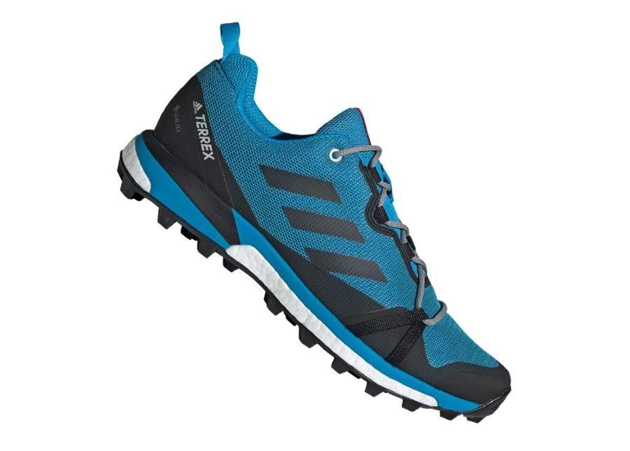 Image of Adidas Miesten vapaa-ajan kengät Adidas Terrex Skychaser LT GTX M F36107