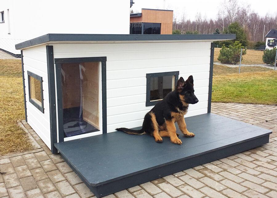 Koerakuut Lämpöeristetty koirankoppi terassilla Boss 4
