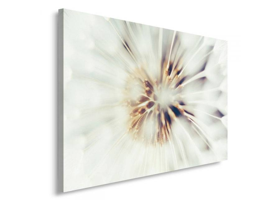 Image of Seinätaulu Dandelion 80x120 cm