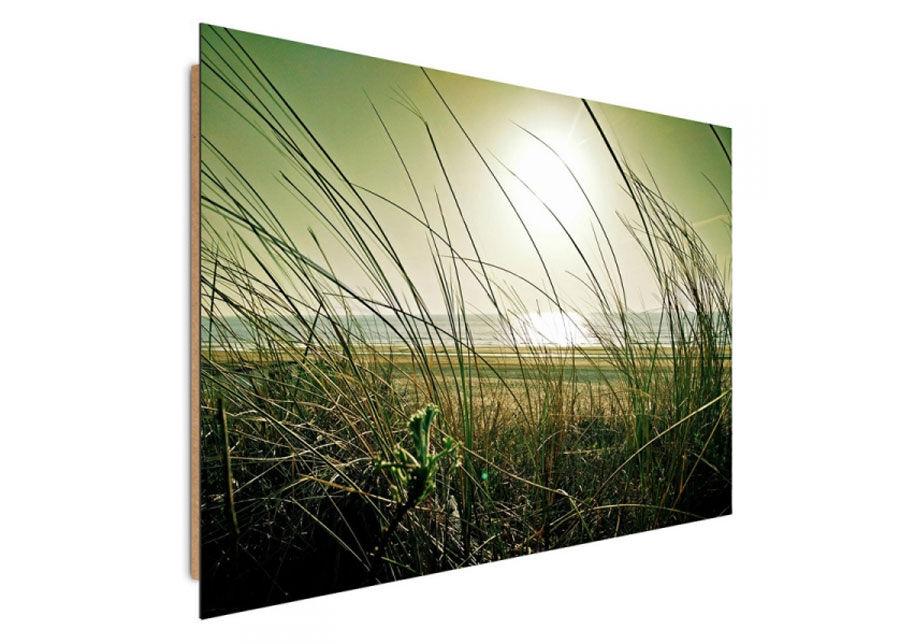 Seinätaulu Coastal grass 70x100 cm