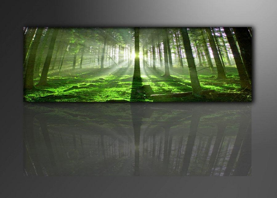 Visario Seinätaulu METSÄ 120x40 cm