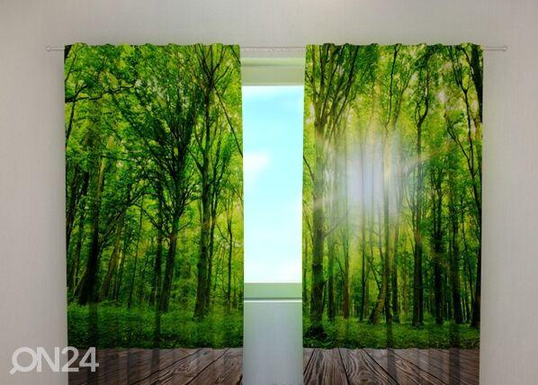 Wellmira Läpinäkyvä verho FOREST AT THE DOORSTEP 240x220 cm