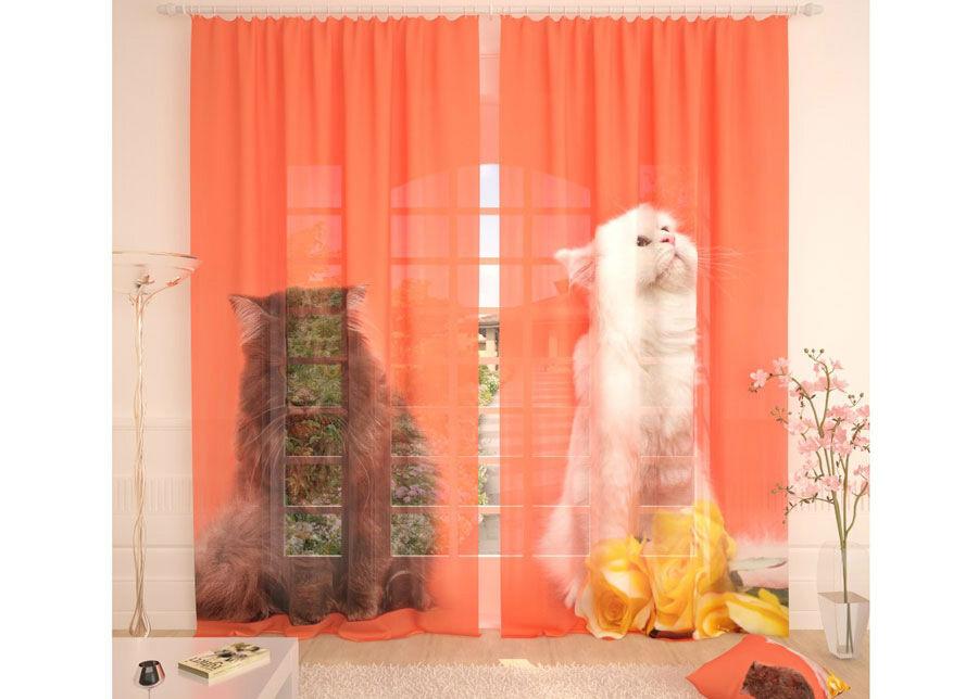 AT-Kodutekstiil Tylliverhot CATS 290x260 cm