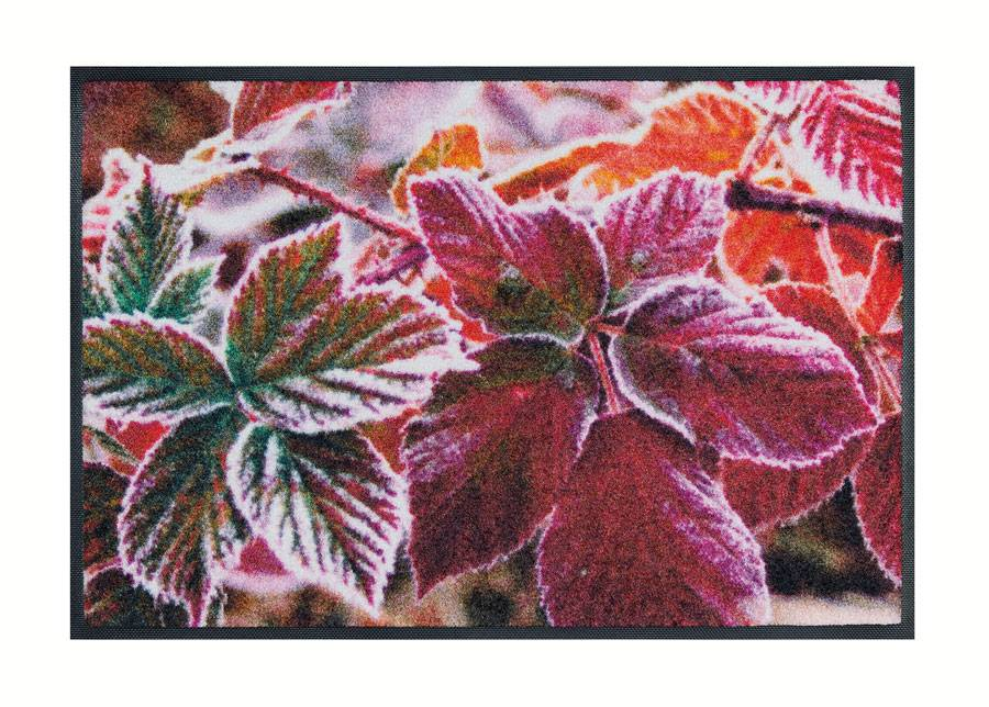 Image of Kleen-Tex Matto FROZEN LEAVES 50x75 cm
