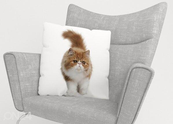 Image of Wellmira Koristetyynyliina FLUFFY CAT 50x50 cm