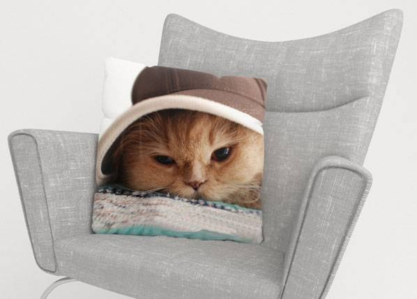 Image of Wellmira Koristetyynyliina CAT IN THE HAT 45x45 cm