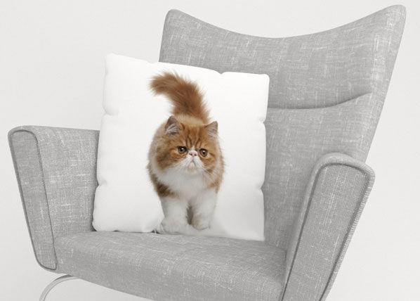 Image of Wellmira Koristetyynyliina FLUFFY CAT 45x45 cm