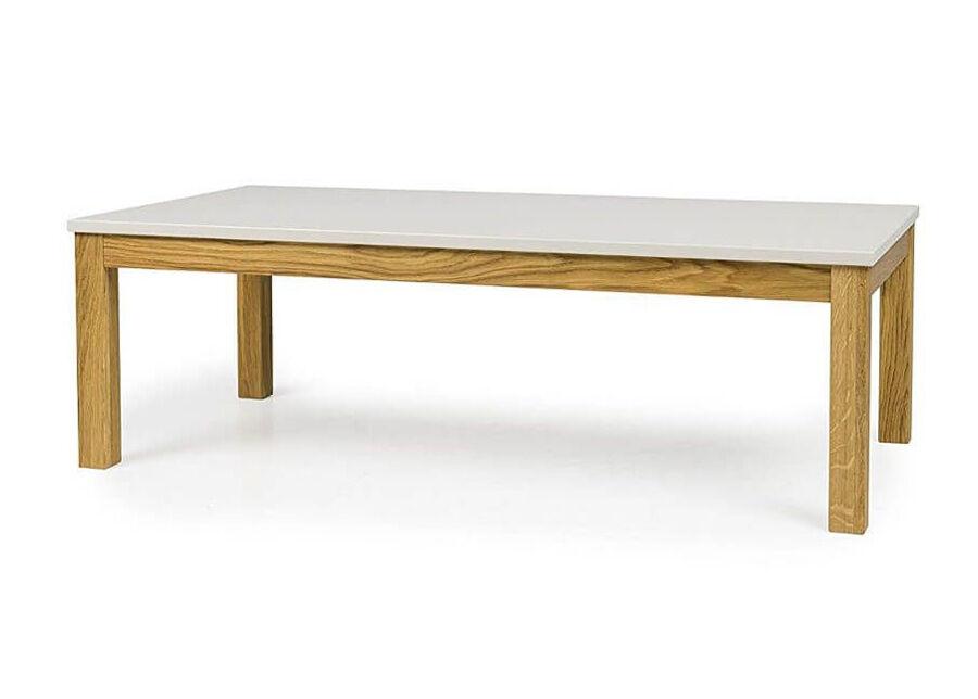 Tenzo Sohvapöytä Fresh 120x60 cm