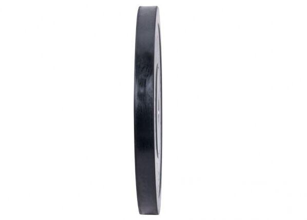 Image of Insportline Levypaino Bumper Plate 10 kg inSPORTline kumi