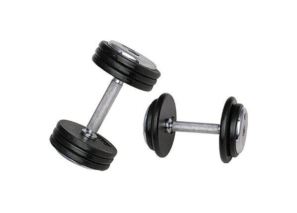 Image of Insportline Ammattimainen käsipaino 20 kg