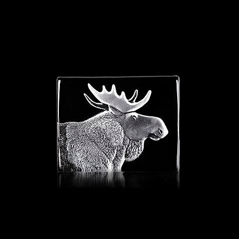 Målerås Glasbruk Wildlife, Hirvi