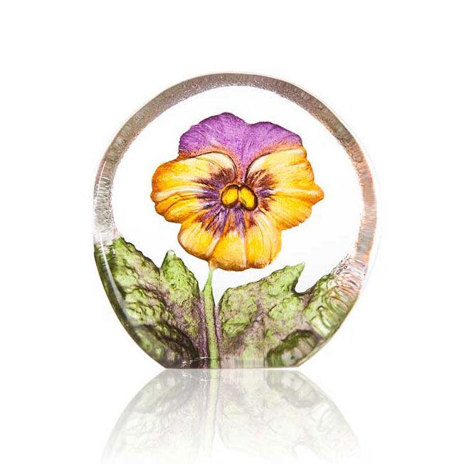 Målerås Glasbruk Floral Fanasy Miniatyr Orvokki, Keltainen/Violetti