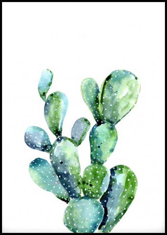 Estancia Kaktus