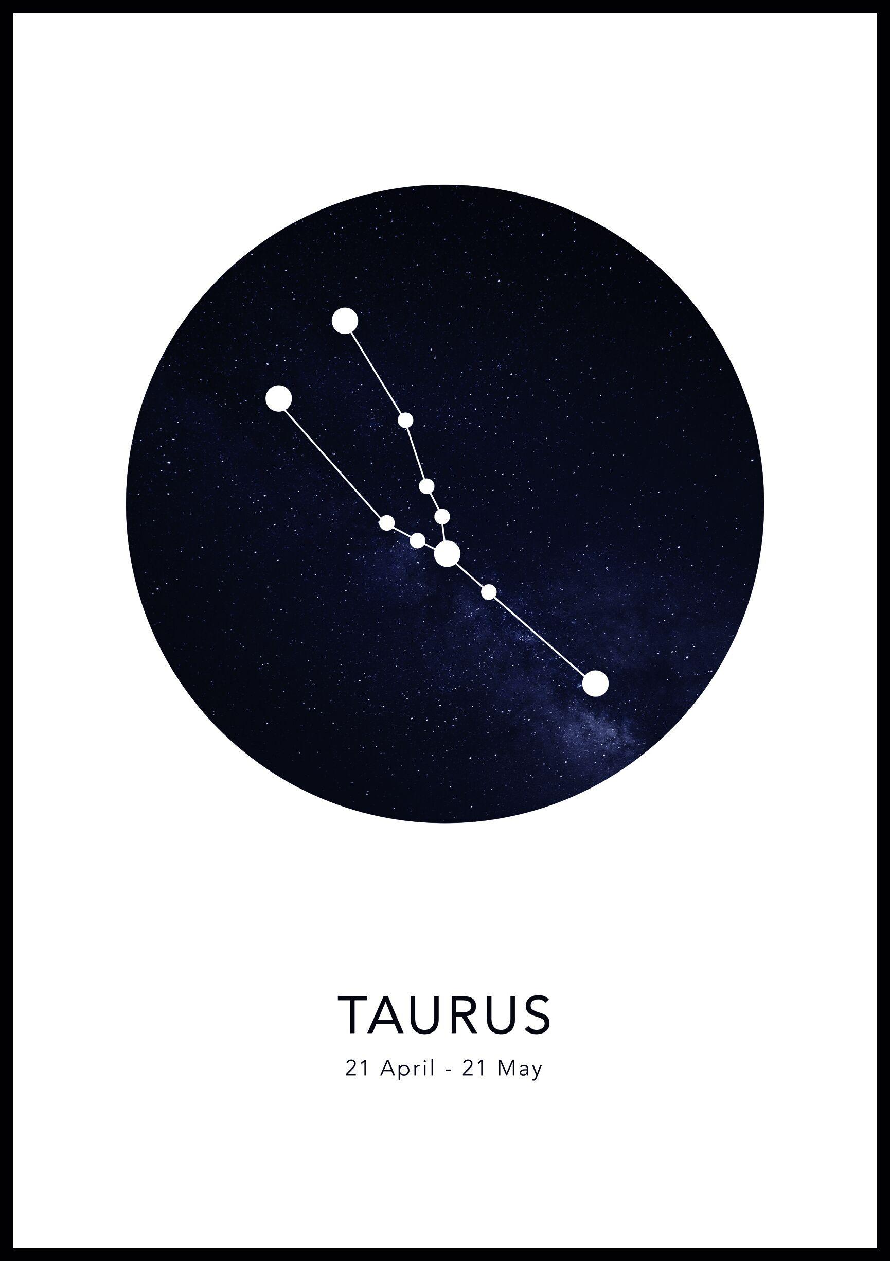 Bildverkstad Taurus