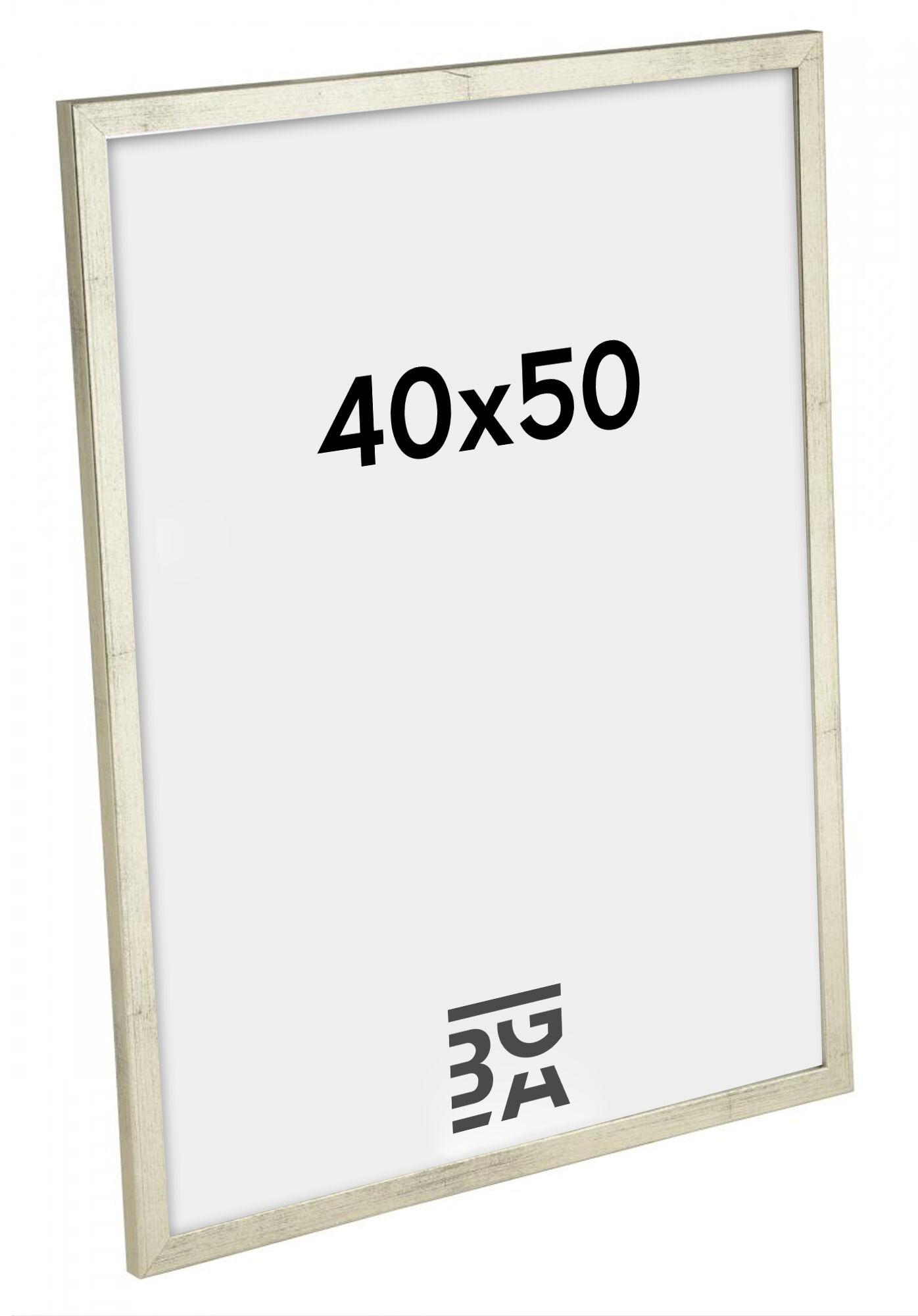 Estancia Galant Pleksilasi Hopeanvärinen 40x50 cm
