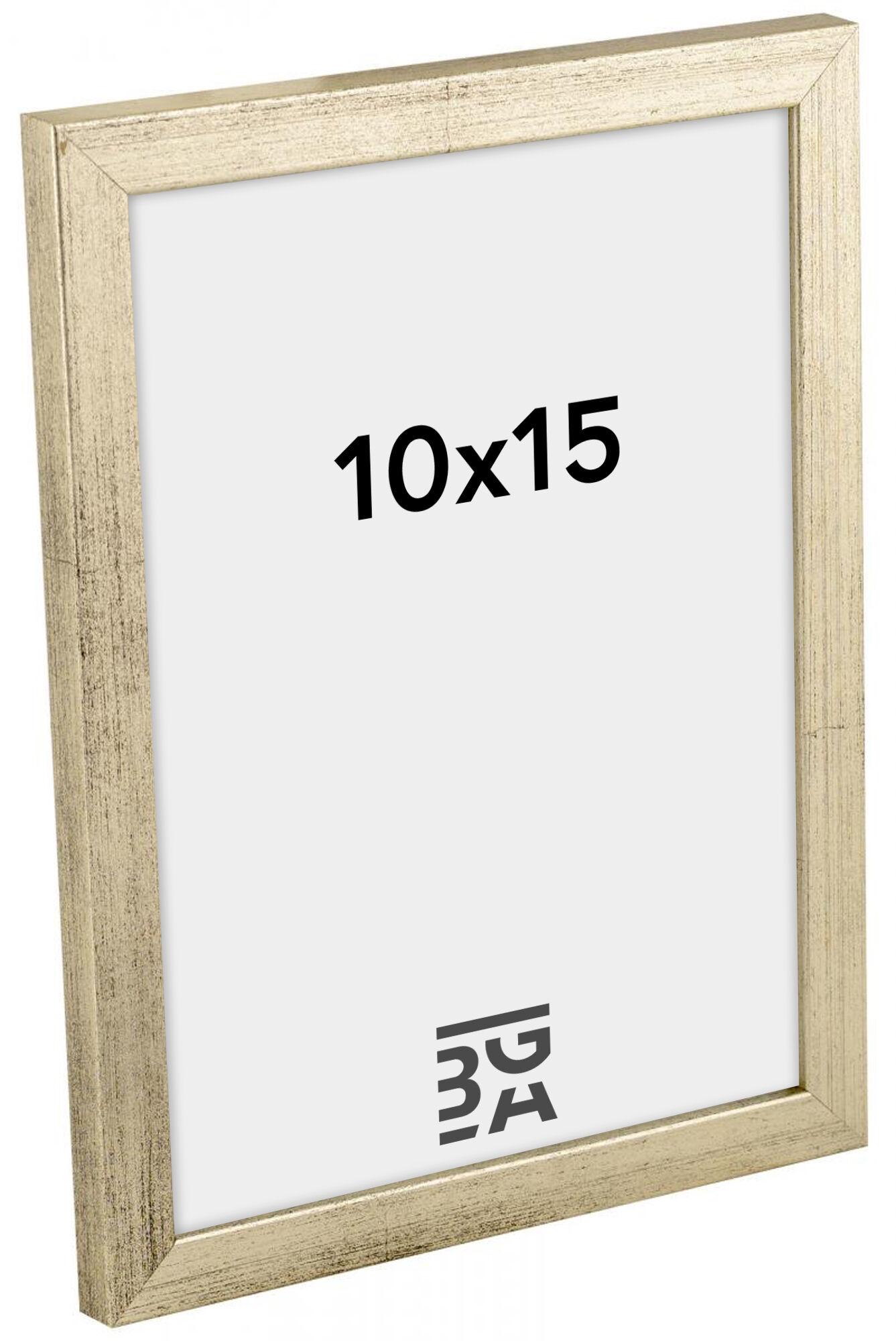 Estancia Galant Hopeanvärinen 10x15 cm