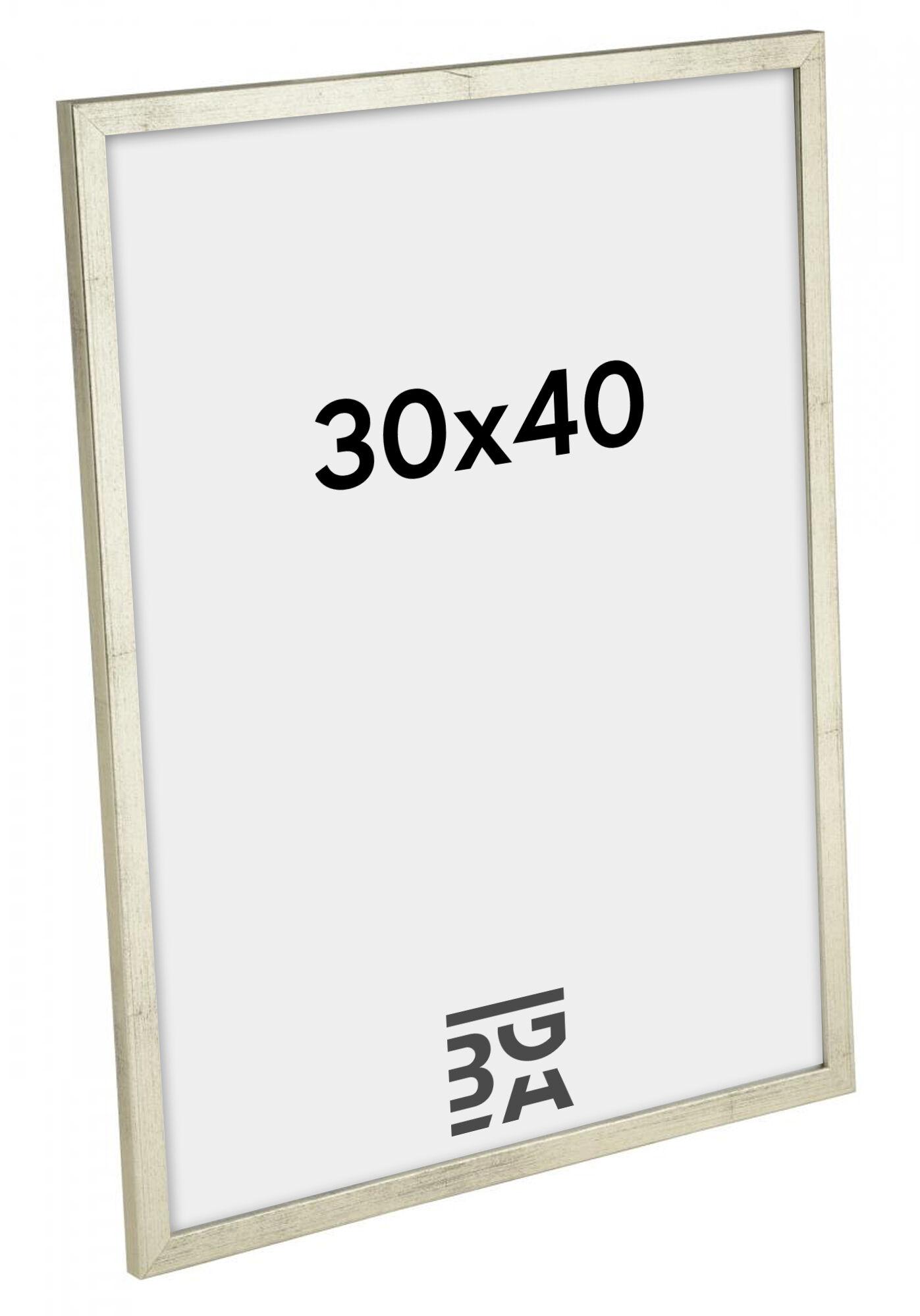 Estancia Galant Hopeanvärinen 30x40 cm